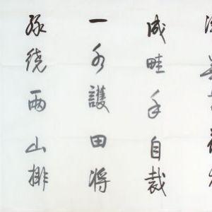 王安石《书湖阴先生壁 》